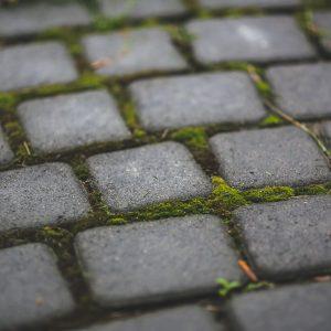 Paving/ patio
